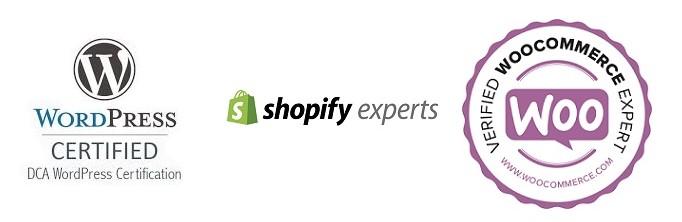 profesionales paginas web rentables y baratas