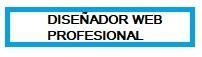 Diseñador Web Profesional Jaén