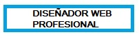Diseñador Web Profesional Orihuela