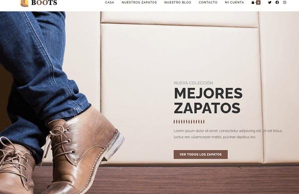 Diseño de Tienda en Linea de zapatos
